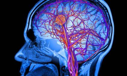 อาหารบำรุงสมอง สารอาหารทั้ง10 ชนิด อยู่ในอาหารประเภทใดบ้าง
